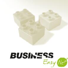 BusinessEasyNet Logo